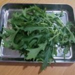 初収穫!水菜を収穫しました。観察日記30日目:水耕栽培器「Green Farm」正規の種子キットを使わずに挑戦!